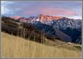 Late Fall Alpenglow